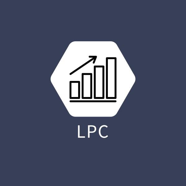 LP Consulting